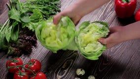 för livstid grönsak fortfarande arkivfilmer