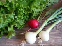 för livstid grönsaker fortfarande royaltyfria bilder
