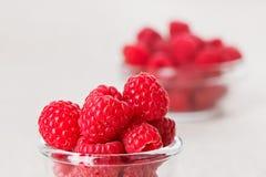 för livstidshallon för bunke glass red fortfarande Royaltyfri Foto