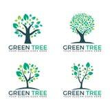 För logovektor för abstrakta gröna träd fastställda designer Arkivfoton