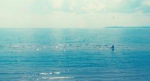 För lopplandskap för hav holyday sjö royaltyfri fotografi