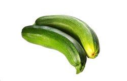 för märgobjekt för design element isolerad grönsak Zucchinizucchini Royaltyfri Bild