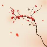 för målningsplommon för blomning orientalisk stil för fjäder Fotografering för Bildbyråer