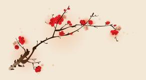 för målningsplommon för blomning orientalisk stil för fjäder Royaltyfri Bild