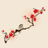 för målningsplommon för blomning orientalisk stil för fjäder Royaltyfri Fotografi