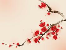 för målningsplommon för blomning orientalisk stil för fjäder Arkivfoto