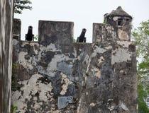 för macau för canonsporslinfort gammala väggar monte Royaltyfri Foto