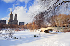 för manhattan för central stad vinter york ny park Arkivfoto