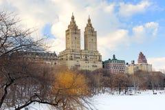 för manhattan för central stad vinter york ny park Royaltyfria Foton