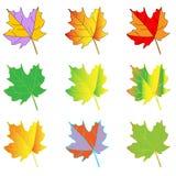 för mappillustration för ai tillgänglig leaf Arkivfoto