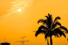 för mappred för bakgrund eps10 solnedgång Arkivbild