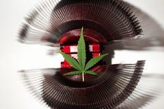 för marijuanametall för lista liggande objekt Arkivfoto