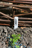 för markörpanel för staket trädgårds- gnäggande Royaltyfria Foton