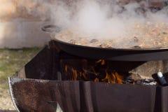 ` För matlagning`-paella, typisk spanjormaträtt, i skogen Arkivfoton