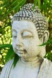 För meditationjämvikt för Buddha head begrepp för brunnsort Royaltyfri Bild
