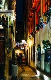 För menyrestaurang för vuxna par rading jul för gata utomhus- Royaltyfri Foto