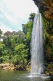 för mexico för djungler för chiapasha-intresse vattenfall för ställe misol populär Royaltyfri Fotografi