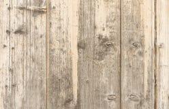 för mittfokus för 12 bakgrund trä för mp för grunge selektivt Royaltyfri Fotografi