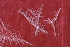 för modellis för makro naturlig frostig kristall Royaltyfri Fotografi