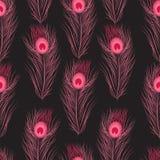 För modellpåfågel för vektor sömlösa fjädrar Royaltyfria Bilder