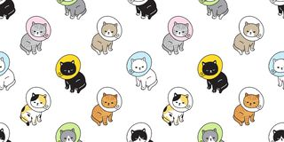 För modellvektor för katt sömlös bakgrund för tegelplatta för tapet för repetition för avel för husdjur för krage för kattunge fö vektor illustrationer