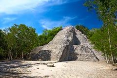 för mulnohoch för coba mayan pyramid arkivbild