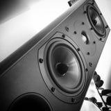 För musikbashögtalare för högtalare solid disktanthögtalare Arkivbild
