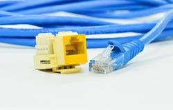 för nätverkspropp för tät anslutning 4 rj upp Arkivbild