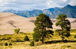 för nationalparkpreserve för dyner stor sand Royaltyfri Fotografi