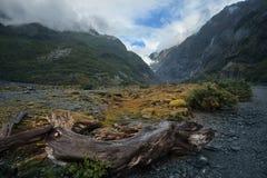 För Nya Zeeland för södra ö för Franz joseph glaciär gränsmärke importand till att resa Arkivfoto