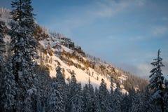 För Oregon för inter-Forest Crater Lake Snowy Mountain landskapfotografi träd Stillahavs- nordvästliga berg Arkivbild