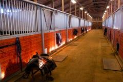 För Paddack för häst för sadelmittbana stall ryttare Fotografering för Bildbyråer