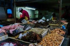 För Panamà för fiskmarknad stad ¡ royaltyfria bilder