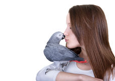 För papegojaang för afrikanska grå färger ung flicka royaltyfri bild