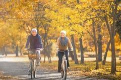 för par pensionär utomhus royaltyfria foton