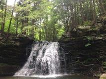 för parktillståndet för berg faller nya trän york för vattenfallet för taughannock fotografering för bildbyråer