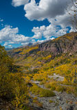 För passerandeTelluride för den svarta björnen den Colorado nedgången färgar Autumn Landscape Arkivbild