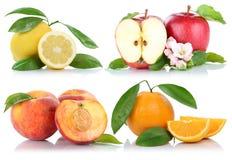 För persikaäpplen för äpplet bär frukt den isolerade orange samlingen för apelsiner Royaltyfri Fotografi