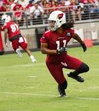 För Pre-säsong för NFL-Arizona Cardinalsfotboll övning träningsläger royaltyfria bilder