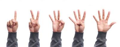 För räkningshand för en till fem fingrar isolerad gest Royaltyfri Foto