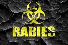 För rabiesvirus för Grunge sprucken bakgrund för begrepp arkivbild
