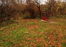 för ramvatten för 2372 skog well Royaltyfria Foton