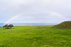 För regnbåge konungar strand och Victor Harbor, södra Australien nära par Fotografering för Bildbyråer