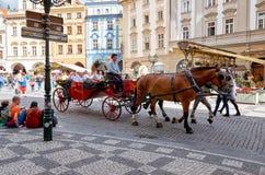 för republiktown för cesky tjeckisk krumlov medeltida gammal sikt Prague Hästar i den gamla stadfyrkanten 15 Juni 2016 Arkivbilder