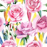 För rosa för rosa te för vildblomma modell blomma i en vattenfärgstil Arkivfoto