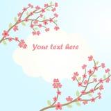 Sakura blomningkort Royaltyfri Illustrationer