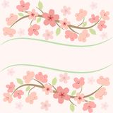 Rosa sakura blomningkort Royaltyfri Illustrationer