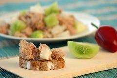för salladtomat för bröd grön tonfisk Arkivbilder