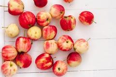 För Sibirien för havrehöststuga scharlakansröda äpplen för vitaminer frukt royaltyfri bild
