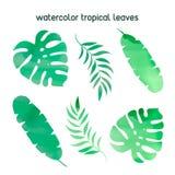 För SIDAfärg för blom- tropisk VATTENFÄRG TROPISK illustration för vektor stock illustrationer